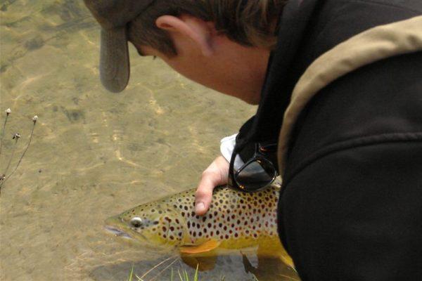 man caught a fish